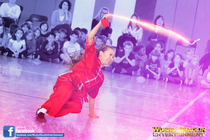 Chinese Female Dancers Wushu
