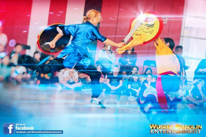 Wushu Warriors Shaolin Warriors