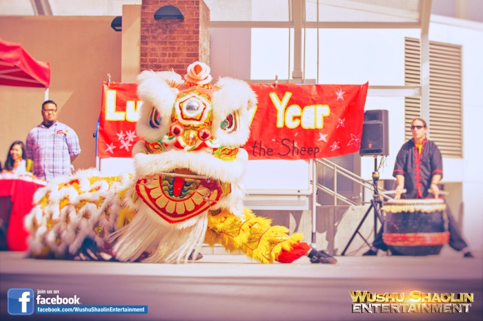 The Wushu Shaolin Entertainment Lion Dance Team is revered for performing on the greatest venues. Book the team today.