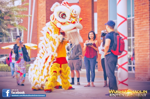 Students are always filled with joy upon experiencing the traditional Chinese Lion Dance. Many of them are unaware of the performance and often think it is a Dragon Costume, since both costumes are very similar.